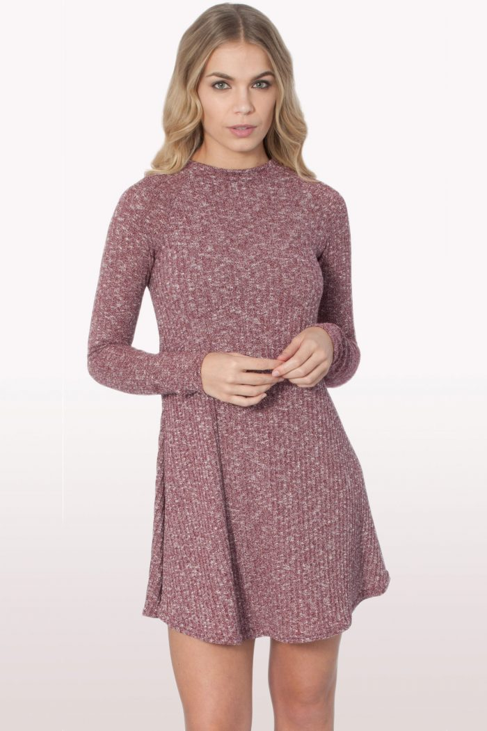 Wine Ribbed Polo Neck Skater Dress