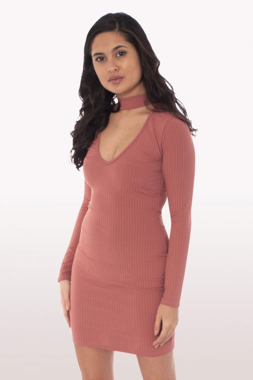 Rose Choker Mini Bodycon Dress
