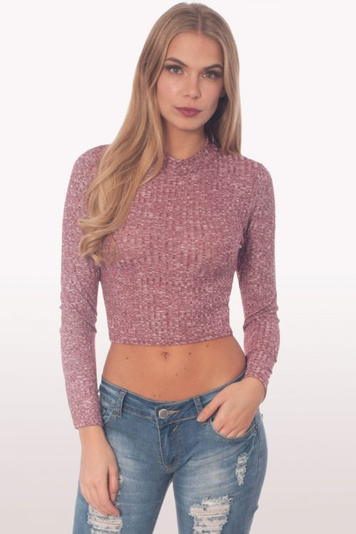 Berry Ribbed Polo Neck Crop Top