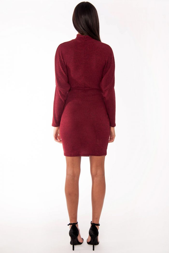 Leona Wine Ribbed Polo Neck Corset Bodycon Dress