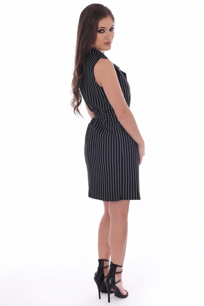 Daisy Black Striped Sleeveless Blazer Dress