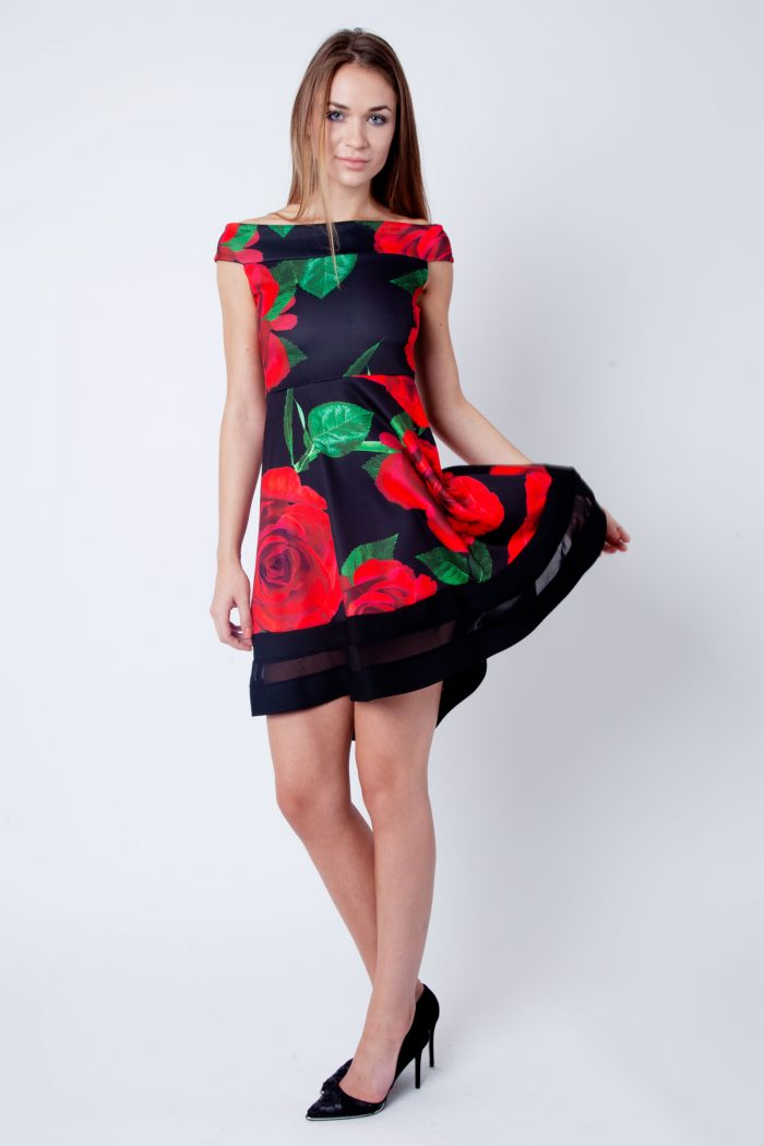 Clara Red And Black Rose Print Bardot Skater Dress