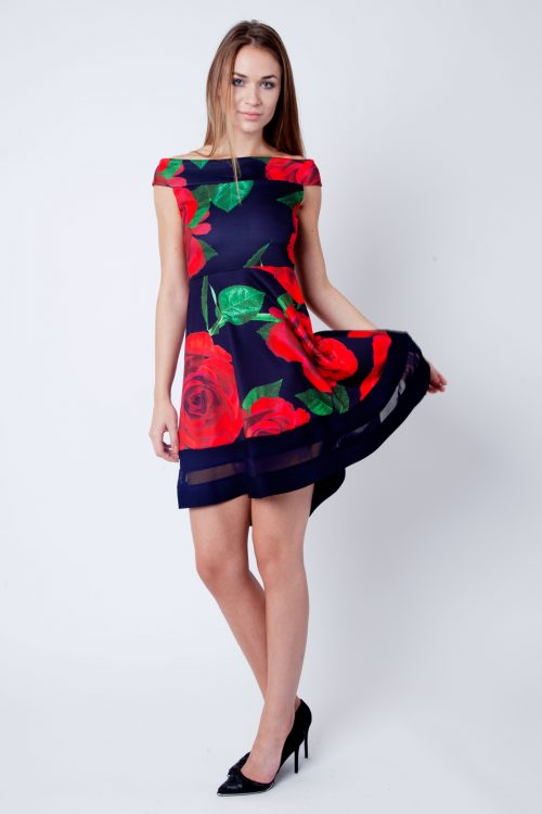 Clara Navy And Red Rose Print Bardot Skater Dress